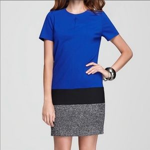 Vince Camuto Color Block Tweed Dress Size 10